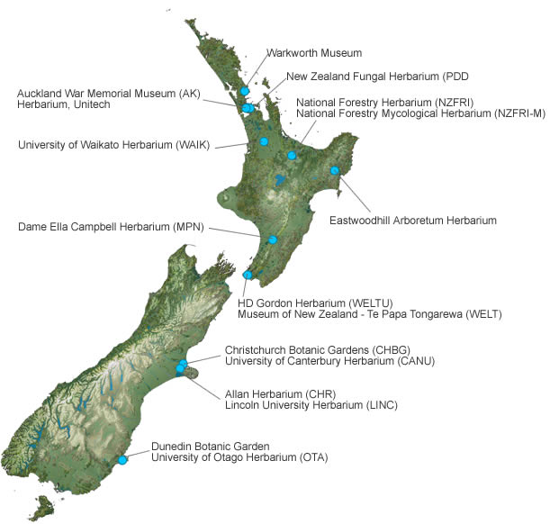 Map of NZ showing locations of herbaria belonging to the network