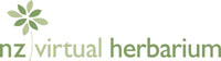NZ Virtual Herbarium Logo
